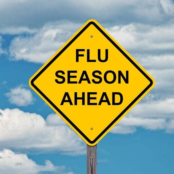 L'épidémie de grippe en 2018-2019
